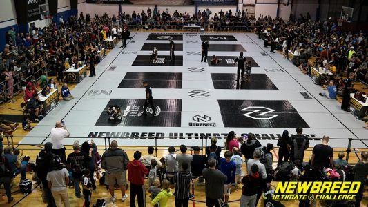 NEWBREED Competitions Image